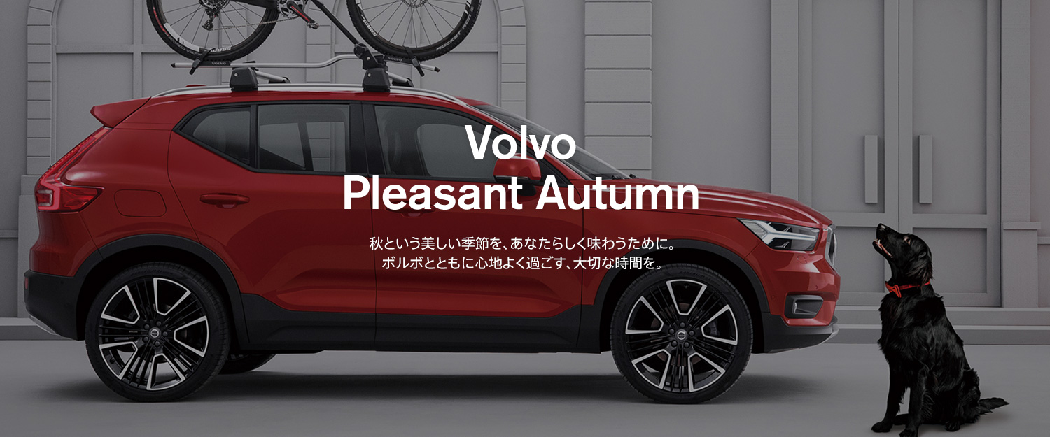 Volvo Pleasant Autumn